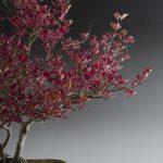 Chinesischer Flieder im Herbst